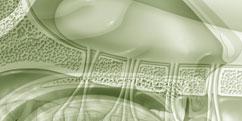 Anatomie - Système sensoriel - Odorat