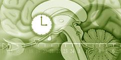 Spécialités Médicales - Neurologie - Sommeil