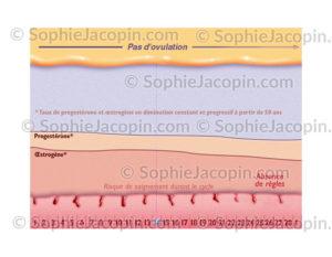 Courbe ménopause