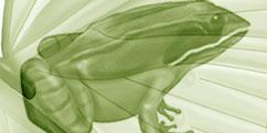 Didactique Scientifique - Zoologie