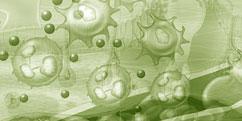 Pathologies - Réactions immunitaires