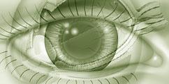 Spécialités Médicales - Ophtalmologie