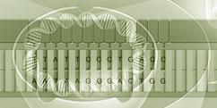 Biologie - Génétique - Gènes