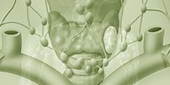 Pathologies - Voies aériennes - Thyroïde