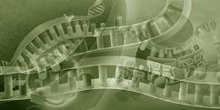 Biologie - Cellules - ADN / ARN