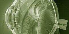 Spécialités Médicales - Ophtalmologie - Glaucome