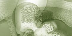 Spécialités Médicales - Dermatologie - Lésions cutanées / Acné