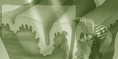 Spécialités Médicales - Dermatologie - Rides / Vieillissement