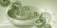 Pathologies - Réactions immunitaires - Sida