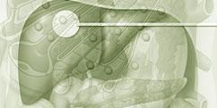 Pathologies - Système digestif - Foie / hépatites