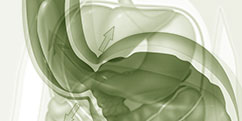 Pathologies - Système digestif - Œsophage / Reflux