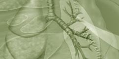 Spécialités Médicales - Pneumologie - Bronches / Bronchite