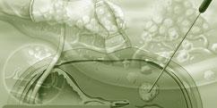 Spécialités Médicales - Cancérologie / Oncologie - Traitements