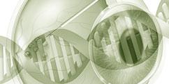Spécialités Médicales - Traitements - Thérapie génique