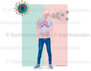 COVID-19, les symptômes provoqués par le coronavirus, SARS-COV-2 - © sophie jacopin