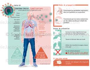 COVID-19, les symptômes et complications, les modes de propagation, les gestes de prévention - © sophie jacopin