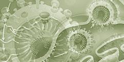 Pathologies - Réactions immunitaires - COVID19